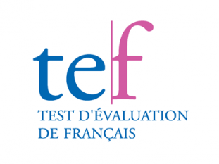 Certification TEF